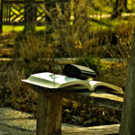 A week in the park … reader's style … Thursday vibes.
