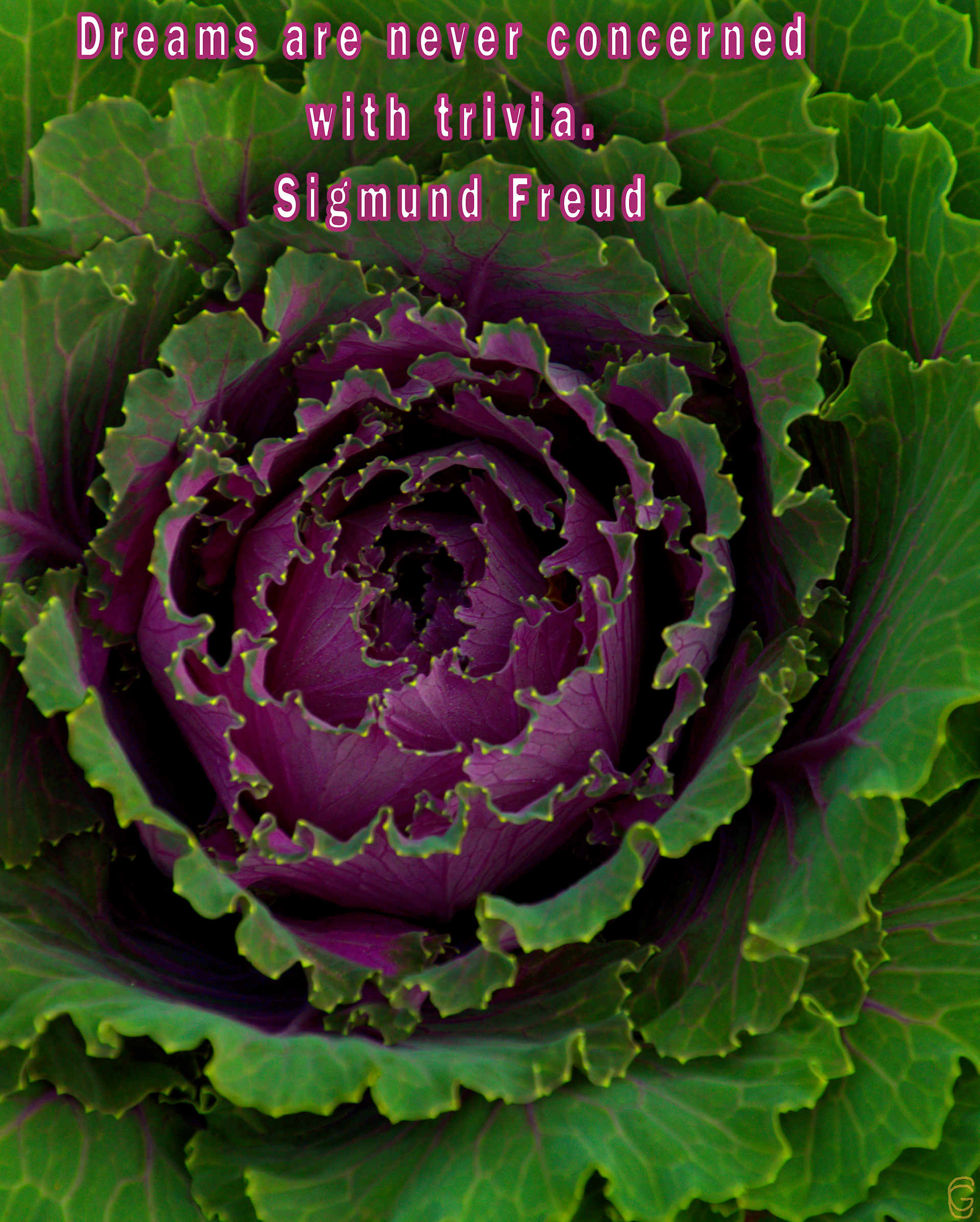 From Sigmund Freud quotes - Week of Apr. 22nd to Apr. 26th